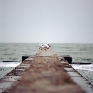 На море не в сезон