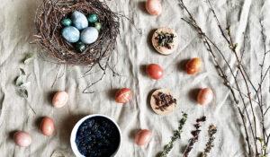 Мастер-класс Алены Селезневой: красим яйца натуральными красителями