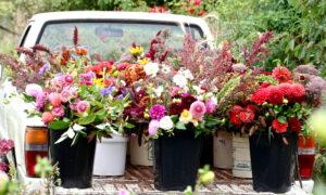Десять современных цветочниц