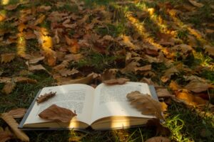 Задрожали листы, облетая: 7 книг для осеннего чтения