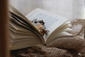 Осень лучше с книгами: книжные с особенной атмосферой